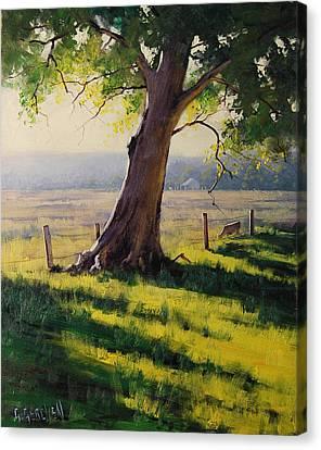 Distant Farm Canvas Print by Graham Gercken