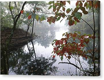 Canvas Print featuring the photograph Dogleg Lake by Jack  R Brock