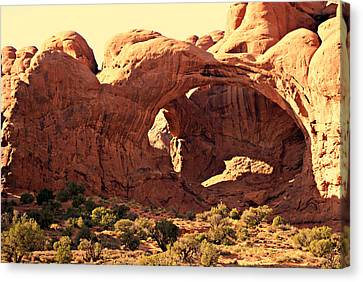 Double Arch Canvas Print by Marty Koch