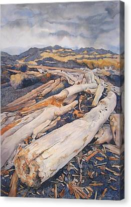 Driftwood Gathering Canvas Print by Leslie Redhead