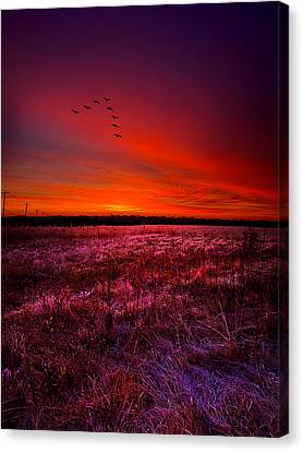 Early To Rise Canvas Print by Phil Koch