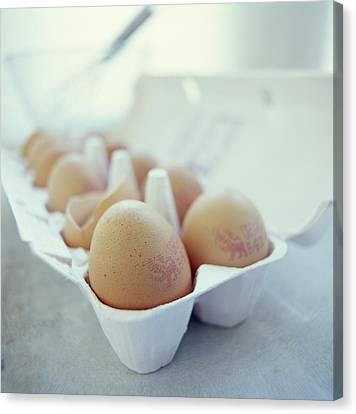 Eggs Canvas Print by David Munns