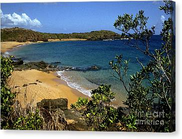 El Convento Beach Canvas Print by Thomas R Fletcher