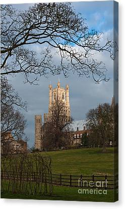 Ely Cathedral  Canvas Print by Andrew  Michael