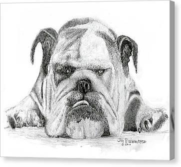 English Bulldog Canvas Print by Jim Hubbard