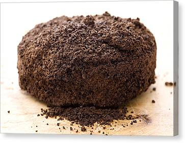 Espresso Coffee Grounds Canvas Print by Frank Tschakert