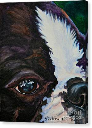 Boston Terrier Animals Acrylic Dog Portraits Pet Portraits Animal Portraits Canvas Print - Eye On You by Susan Herber