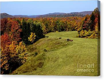 Fall Color Randolph County West Virginia Canvas Print by Thomas R Fletcher