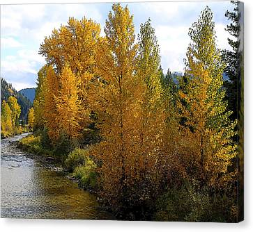 Canvas Print featuring the photograph Fall Colors by Steve McKinzie