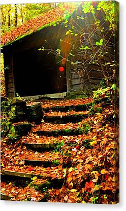 fall time in Ithaca New York.  Canvas Print