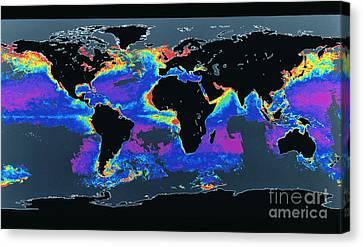 False-col Satellite Image Of Worlds Canvas Print by Dr. Gene Feldman, NASA Goddard Space Flight Center