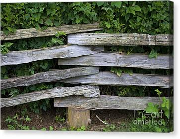 Canvas Print featuring the photograph Fence Weave by Bill Thomson