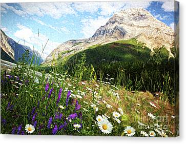Field Of Daisies And Wild Flowers/digital Painting  Canvas Print by Sandra Cunningham