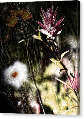 Field Of Feelings  Canvas Print by Jerry Cordeiro