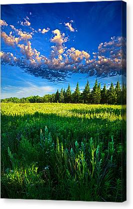 Fields And Dreams Canvas Print by Phil Koch