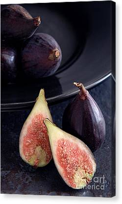 Figs Canvas Print by HD Connelly