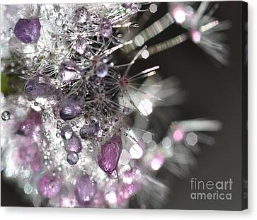 Canvas Print featuring the photograph Fleur De Cristal by Sylvie Leandre