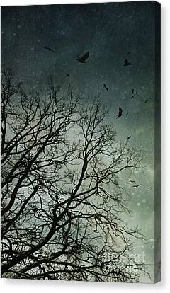 Flock Of Birds Flying Over Bare Wintery Trees Canvas Print by Sandra Cunningham