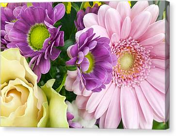 Floral Spring Background Canvas Print