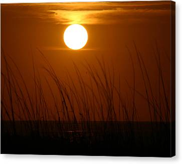 Canvas Print featuring the photograph Florida Sunrise by Jeanne Andrews