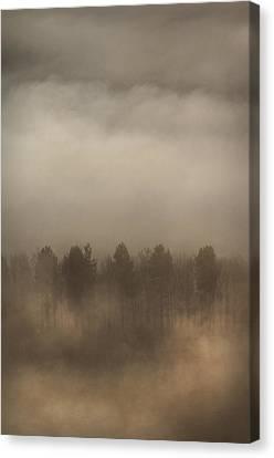 Fog Wall Canvas Print by Andy Astbury