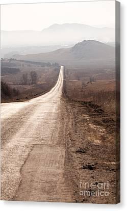 Foggy Road In Dobrogea Canvas Print by Gabriela Insuratelu