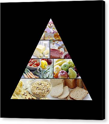 Food Pyramid Canvas Print by David Munns