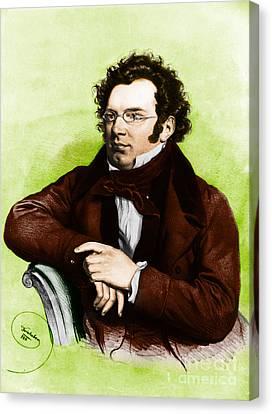 Schubert Canvas Print - Franz Peter Schubert, Austrian Composer by Omikron