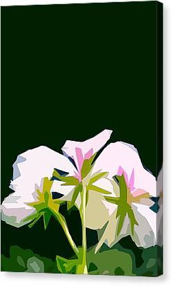 Geranium 3 Canvas Print by Pamela Cooper
