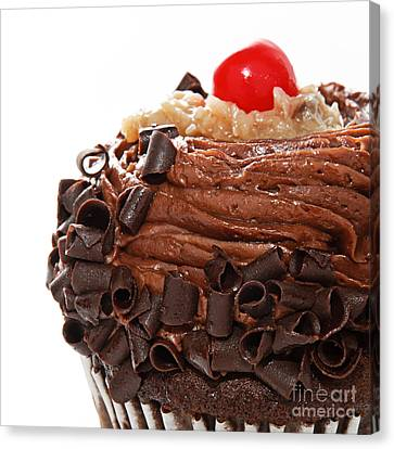 German Chocolate Cupcake 3 Canvas Print by Andee Design