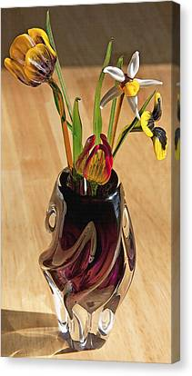 Glass Bouquet 1 Canvas Print by Steve Ohlsen