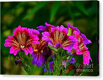 Gleaming In Purple And Gold Canvas Print by Byron Varvarigos