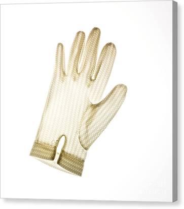 Glove Canvas Print by Bernard Jaubert