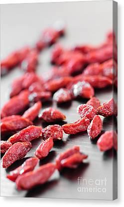 Goji Berries Canvas Print by Elena Elisseeva