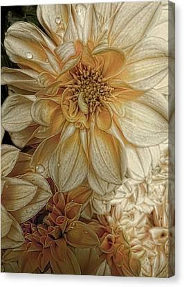 Golden Summer  Canvas Print by Julie Williams