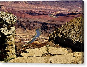 Grand Canyon Colorado River Canvas Print by Bob and Nadine Johnston