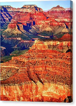 Grand Canyon National Park Canvas Print by James Bethanis