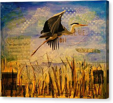 Great Blue Heron Canvas Print by Terry Honstead