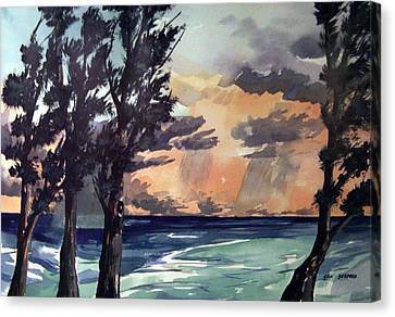 Haena Canvas Print by Jon Shepodd