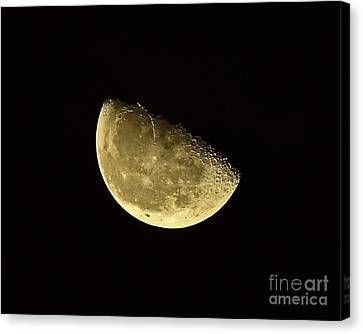 Handsome Half Moon Canvas Print by Al Powell Photography USA