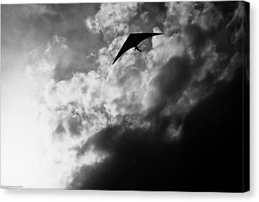 Hang Canvas Print by Michael Nowotny