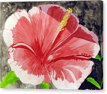 Happy Hibiscus Canvas Print by Debi Singer