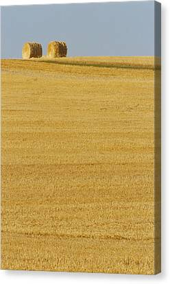 Hay Bales, Holland, Manitoba Canvas Print by Mike Grandmailson
