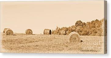 Hay Rolls  Canvas Print by Laurinda Bowling