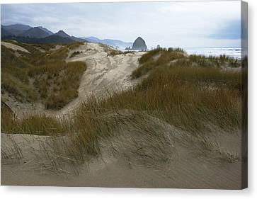 Haystack Rock Canvas Print by Steven A Bash
