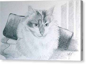 Idget Canvas Print