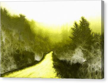 In The Forest Canvas Print by Steve K