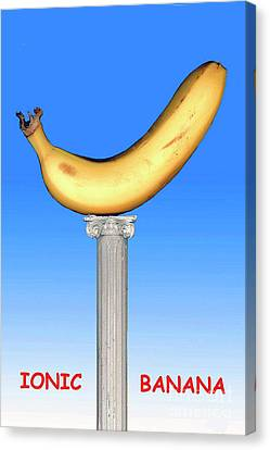 Canvas Print featuring the mixed media Ionic Banana by Bill Thomson