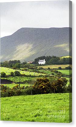 Irish Farm - Dingle Peninsula  Canvas Print by Gordon Wood