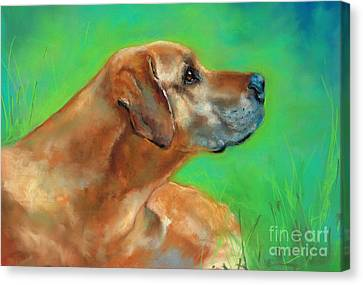 Ridgeback Canvas Print - Jasper by Frances Marino